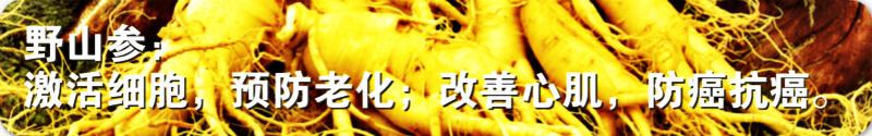 苹果干细胞页面图片11.jpg