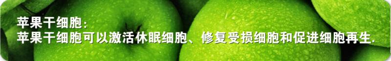 苹果干细胞页面图片6.jpg
